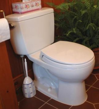 Steve Maxwell slow-flushing toilet