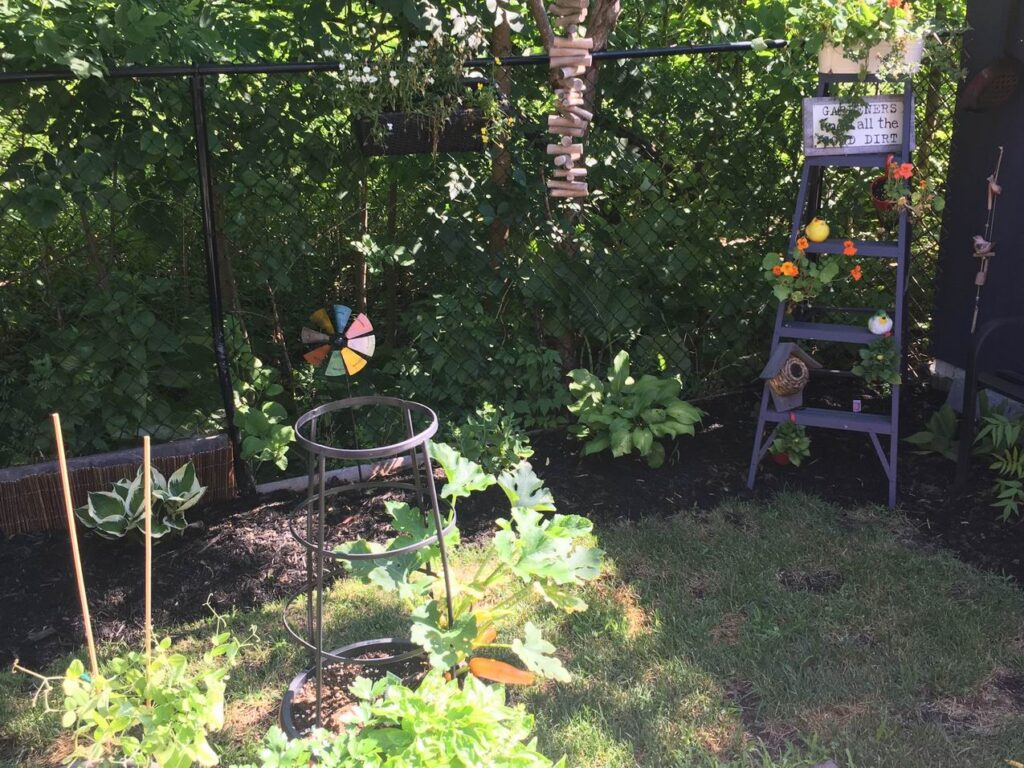 Sue Pitchforth Decor Therapy Plus backyard space