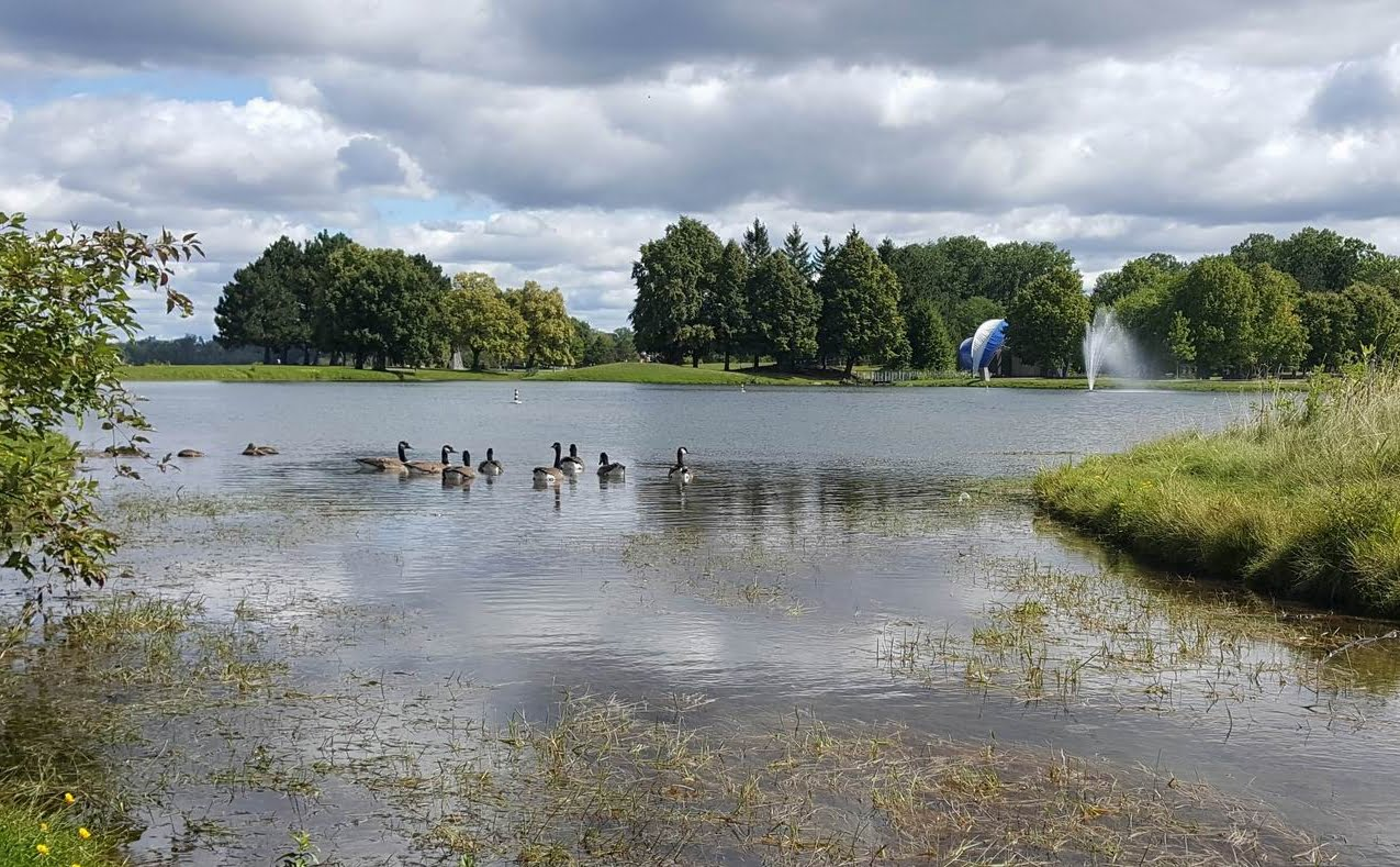Bayshore-Britannia Ottawa community Andrew Haydon Park