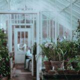 GAR gardening trends greenhouse