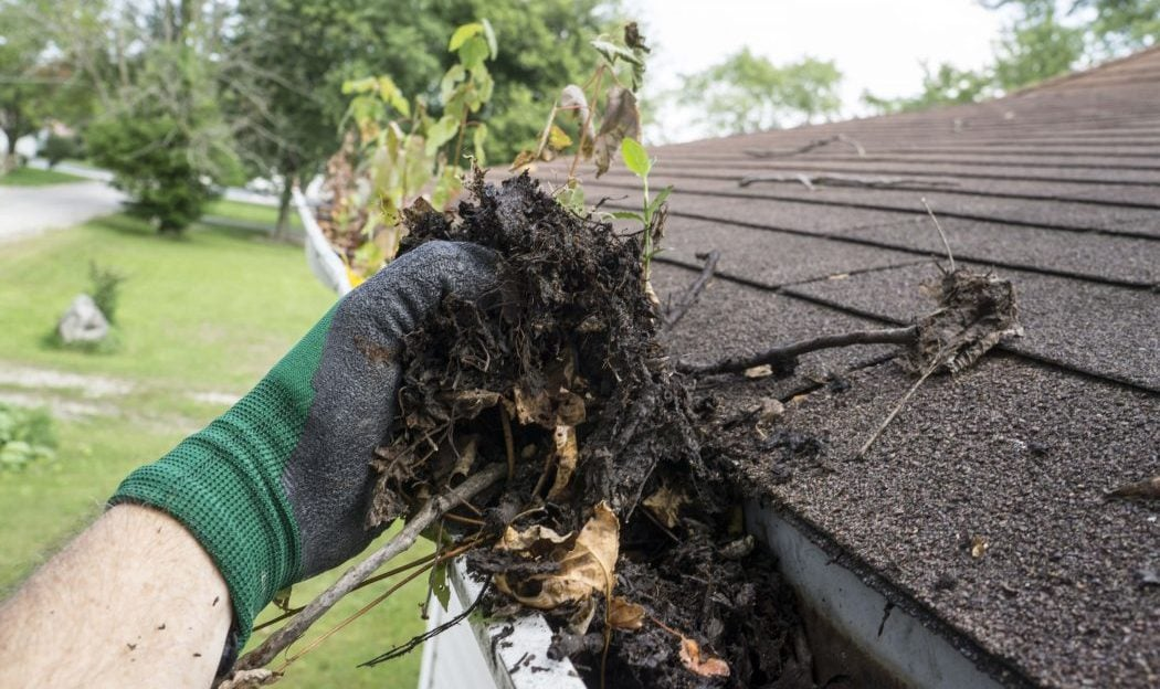 Homeowner Helpers cleaned your gutters yet?