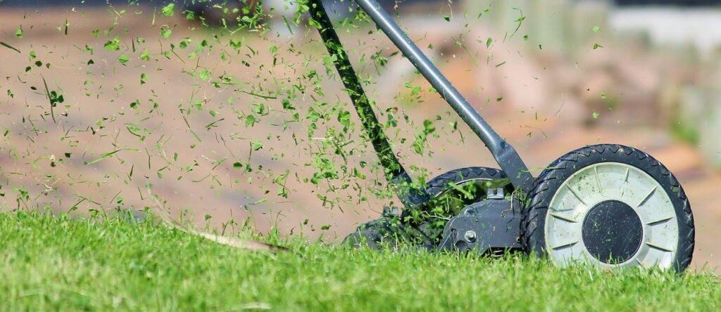 lawn advice Carson Arthur