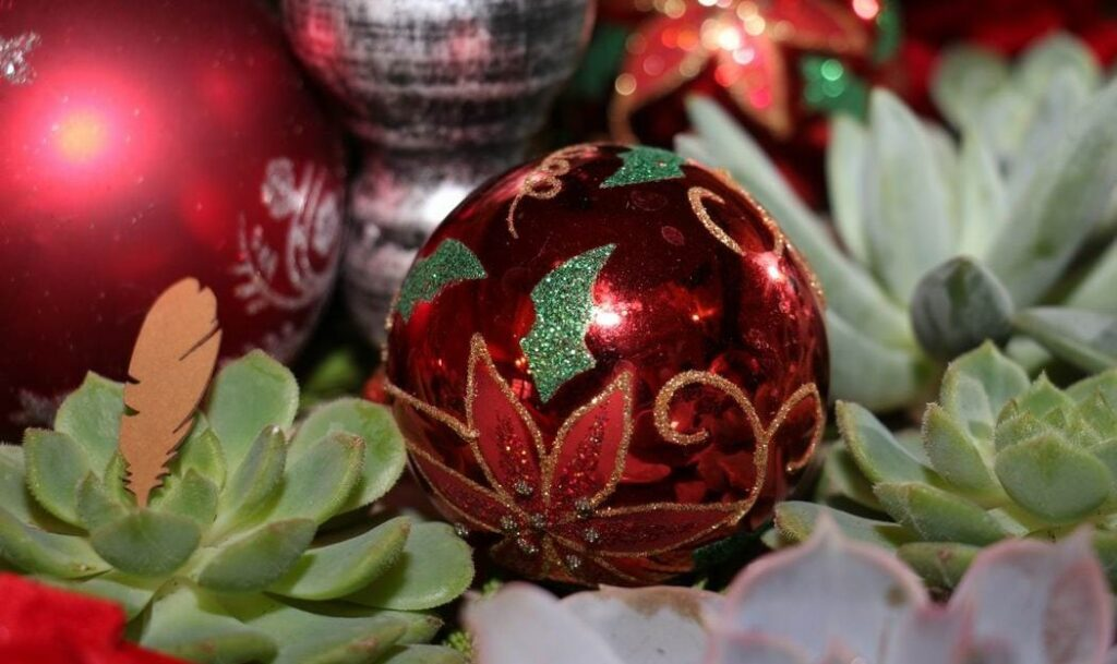 Homes for the Holidays Scrims Florist Christmas decorating succulents ornaments