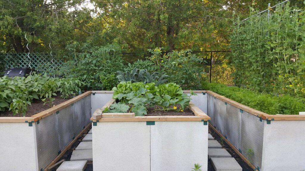 raised vegetable planters vegetable gardens